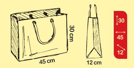 طراحی و چاپ انواع ساک دستی کاغذی